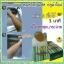 สบู่ หอย+กลูต้า ผิวขาวออร่า อาบฟอกเพียง 3 นาที รีวิวนับพัน thumbnail 20