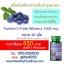 อาหารเสริมบำรุงสายตา Puritan's Pride Bilberry 1000 mg./ 90 softgels thumbnail 6