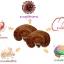 เห็ดหลินจือบำรุงร่างกาย Nature Smart Reishi Mushroom 1000 mg ขนาด 60 Capsules thumbnail 2