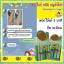 สบู่ หอย+กลูต้า ผิวขาวออร่า อาบฟอกเพียง 3 นาที รีวิวนับพัน thumbnail 19