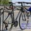 ไฮบริด CARRERA CARINO 100 thumbnail 16