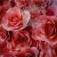 ดอกไม้กระดาษโทนสีแดงสด - flower paper backdrop - ขนาด 30 cm thumbnail 1