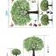 """วอลล์สติ๊กเกอร์ตกแต่งผนัง หมวดต้นไม้ """"Green Tree and Butterfly"""" thumbnail 3"""