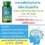 อาหารเสริมบำรุงสมอง ใบแปะก๊วยสกัด Puritan's Pride Ginkgo Biloba 120 mg / 100 Capsules thumbnail 2