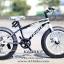 จักรยานล้อโต Coyote mammoth 20นิ้ว เฟรมอัลลอย thumbnail 3