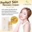 ชาลิต้า CHALiTA Perfect Skin Recovery Cream thumbnail 2