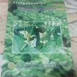 การปลูกพืชผักโดยวิธีเกษตรธรรมชาติ ราคา 20
