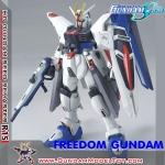 HG 1/144 R15 FREEDOM GUNDAM อาร์15 ฟรีดอม กั้นดั้ม