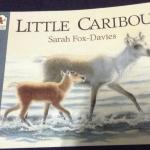 Little caribou ราคา 95