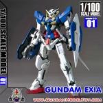 1/100 GUNDAM EXIA กันดั้ม เอ็กซ์เซีย