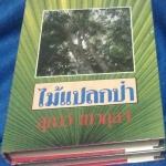 ไม้แปลกป่า (ละคร พล/พรชิตา/ชาเลต) สุภาว์ เทวกุล ปกแข็ง 2 เล่มจบ ราคา 308