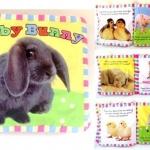 หนังสือผ้า Baby Bunny by Priddy Books