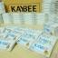 อาหารเสริมลดน้ำหนัก kaybee perfect (สีฟ้าขนาดทดลอง 10 แคปซูล) thumbnail 4