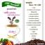 กาแฟ พาดาโซ่พัส Padaso's Coffee thumbnail 8