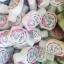 หัวเชื้อcitra 30 ml.ผิวเปล่งประกาย พร้อมส่วนผสมป้องกันยูวี thumbnail 3