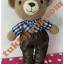 ตุ๊กตาหมีถักโครเชต์ thumbnail 1