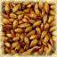 CARA RUBY Malt - Castle Malting (1 lbs) thumbnail 1