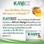 อาหารเสริมลดน้ำหนัก kaybee perfect (สีฟ้าขนาดทดลอง 10 แคปซูล) thumbnail 3