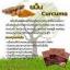 สบู่กาแฟสครับขมิ้น (Coffee Curcuma Scrub Soap) thumbnail 4
