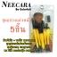 ชุดแปรง Nee CARA 5 ชิ้น ด้ามจับใส +ซองใส พกพาสะดวก (สีเหลือง) thumbnail 1