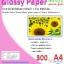 กระดาษอิ้งค์เเจ็ทพิมพ์ภาพกันน้ำ 2 หน้า ชนิดผิวมันวาว หนา 300 แกรม ขนาด A4 จำนวน 50 แผ่น thumbnail 1
