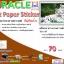 สติ๊กเกอร์กระดาษคราฟท์ (ไม่กันน้ำ) หนา 70 แกรม ขนาด A4 จำนวน 20 แผ่น thumbnail 1