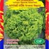 ผักกาดหอมสีเขียว