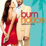 Burn Notice Season 1 / สายลับไม่ทิ้งลาย ปี 1 / 3 แผ่น DVD (บรรยายไทย)
