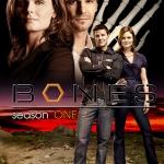 Bones Season 1 / โบนส์ พลิกซากปมมรณะ ปี 1 / 6 แผ่น DVD (พากษ์ไทย+บรรยายไทย)
