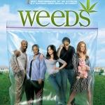 Weeds Season 1 / ม่ายชุลมุน ปี 1 / 2 แผ่น DVD (บรรยายไทย)