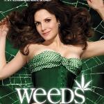 Weeds Season 5 / ม่ายชุลมุน ปี 5 / 6 แผ่น DVD (บรรยายไทย)