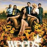 Weeds Season 2 / ม่ายชุลมุน ปี 2 / 2 แผ่น DVD (บรรยายไทย)