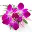 ช่อดอกไม้ติดเสื้อ รหัส 6030