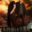 Supernatural Season 7 / ล่าปริศนาเหนือโลก ปี 7 / 6 แผ่น DVD (บรรยายไทย) thumbnail 1