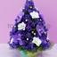 Lilac & Christmas Tree