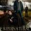 Supernatural Season 8 / ล่าปริศนาเหนือโลก ปี 8 / 6 แผ่น DVD (บรรยายไทย) thumbnail 1
