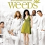Weeds Season 3 / ม่ายชุลมุน ปี 3 / 6 แผ่น DVD (บรรยายไทย) thumbnail 1