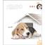 หนังสือสอนสีไม้ วาดน้องหมา เล่ม 1 หลากหลายสายพันธุ์น่ารักๆ (พร้อมส่ง) thumbnail 4
