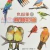 (พร้อมส่ง) CUTEBIRDTW: สีไม้กับนกสวยๆน่ารัก (Taiwan)