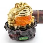 เซียมซู้มงคล กบคาบเหรียญมงคลบนใบบัวนำโชค คาบเงินคาบทอง อวยพรโชคลาภ