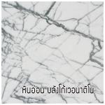 หินอ่อน บลังโก้เวอนาติโน่ (Bianco Venatino Marble)