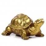 เต่ามงคลอายุมั่น ขวัญยืน