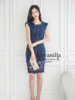 Luxury eyelet lace Dress