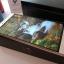 ขาย Huawei P8 Max สีทอง สภาพ 99.99% thumbnail 14