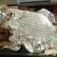 ปลาหลี่ฮื้อเกล็ดเหรียญเงิน เหลือกินเหลือใช้ thumbnail 2