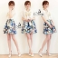 Butterfly Chiffon PV Cooling Sequined Printed Skirt One Pieces Mini Dress thumbnail 1