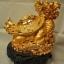 เต่าหัวมังกรฐานเหรียญทอง ตัวเเทนของความมั่งคั่ง บารมี อายุวัฒนา thumbnail 3