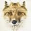 กรอบลอยผ้าแคนวาส ภาพหมาป่าอาร์ต thumbnail 1
